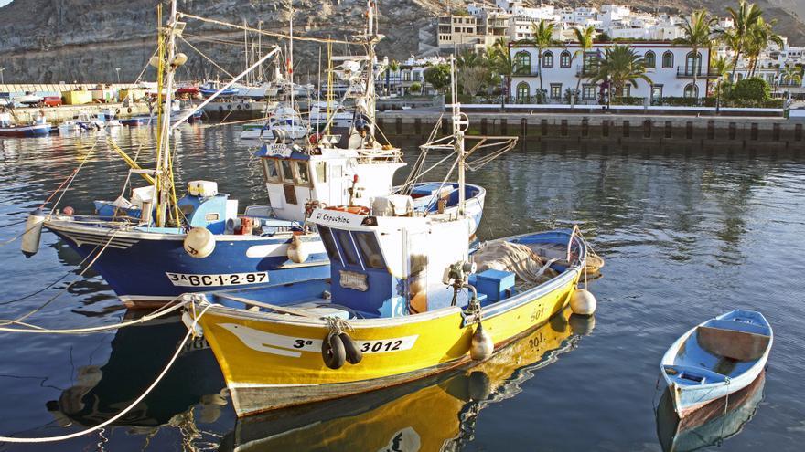 Cofradía de Pescadores de Mogán (ALEJANDRO RAMOS)