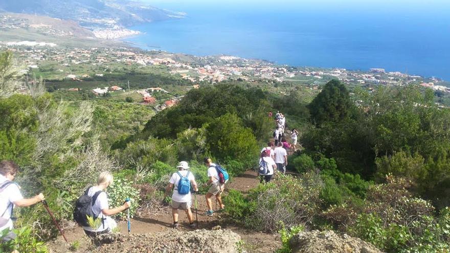 En la imagen, un grupo de caminantes durante una de las rutas realizada con motivo del 'IV Encuentro Regional de Senderismo' celebrado en La Palma.