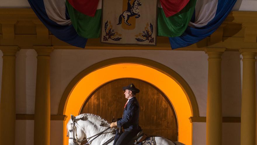 'Cómo bailan los caballos andaluces' por dentro: los entresijos de un espectáculo meticuloso