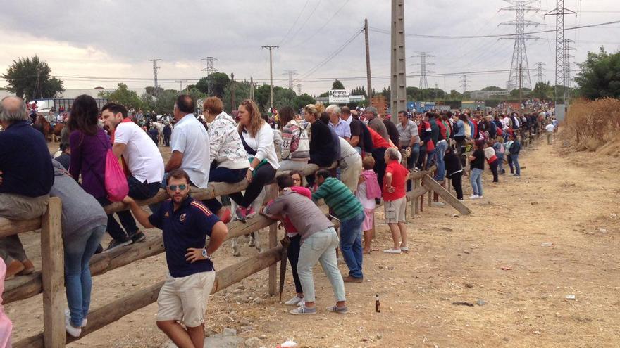 Los asistentes a la fiesta de Tordesillas esperan al toro en la Vega