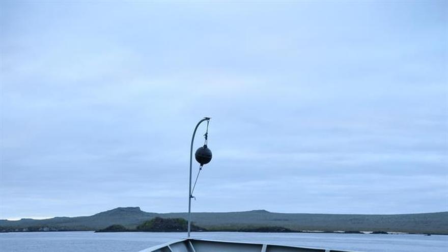La tortuga Diego da sus primeros pasos en la isla Española bajo estricta vigilancia