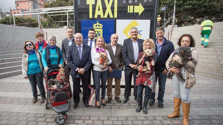 Presentación del acuerdo que permitirá viajar en Global con mascotas