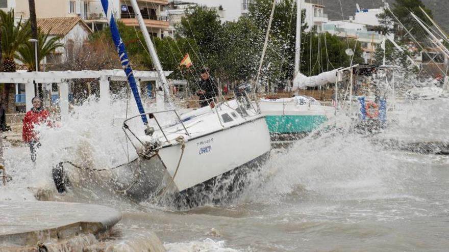 El temporal arrastró ayer una quincena de embarcaciones hasta la arena en el Port de Pollença (Mallorca). El intenso oleaje ha desplazado hasta la orilla de la arena sin problema alguno barcos que estaban fondeados en el mar.