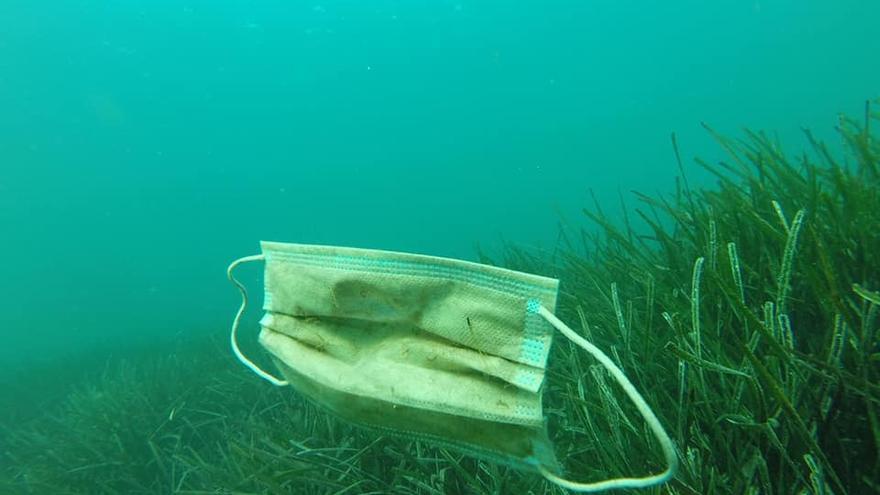 Una mascarilla desechable en el fondo del océano