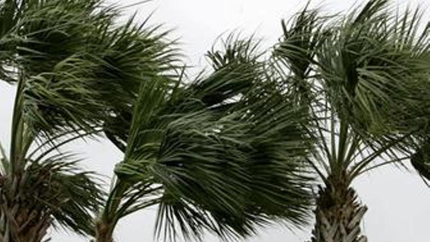 La tormenta tropical 'Alex' toca tierra en Belice