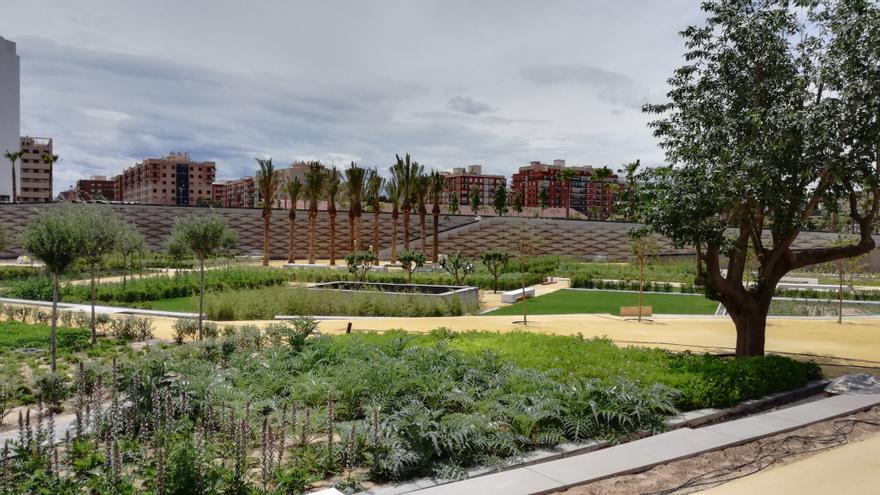 Estado actual de las zonas verdes del Parque Central