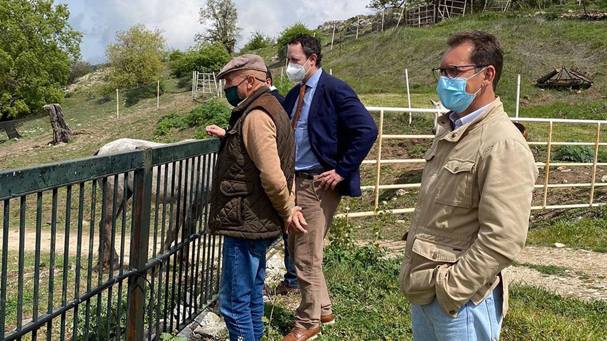 El delegado de Agricultura, Ganadería y Pesca de la Junta de Andalucía en Córdoba, Juan Ramón Pérez (al fondo), visita una explotación equina.