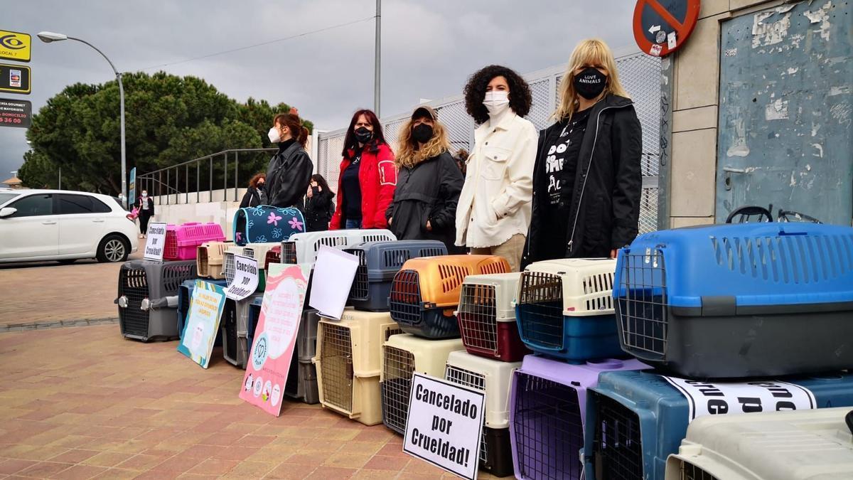 Las actrices Nathalie Poza, Nathalie Seseña, Irene Visedo y Lluvia Rojo, en la concentración ante el Juzgado de Colmenar Viejo