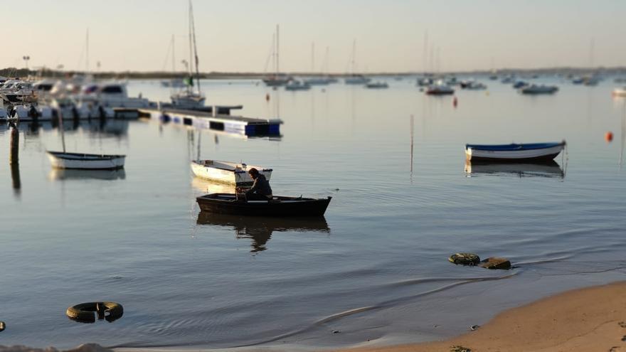 Barcos pesqueros en el puerto de Sancti Petri.