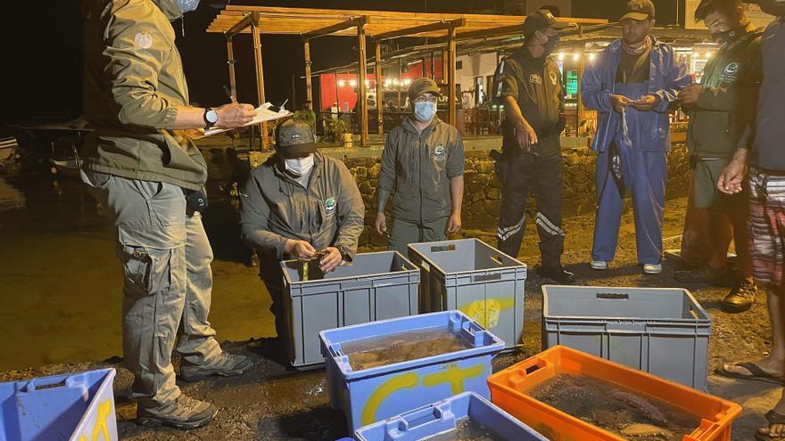 Ecuador impone veda a la pesca del pepino de mar por fin de la cuota