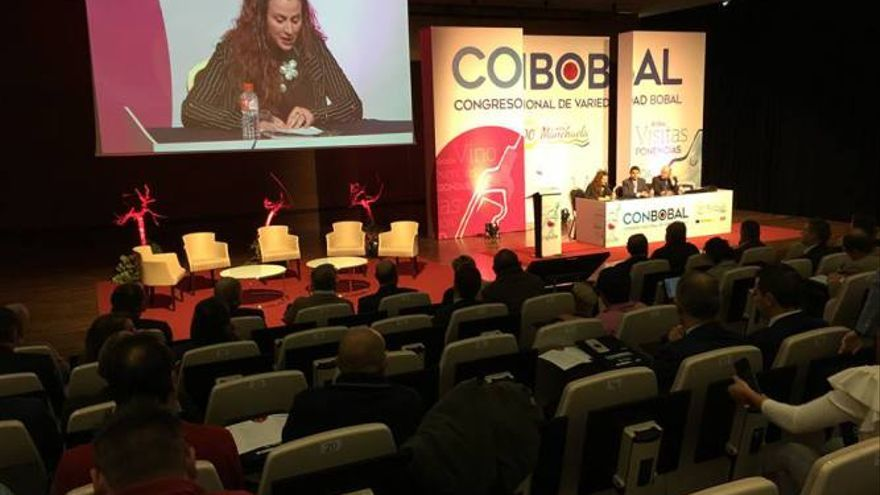 Congreso ConBobal en Albacete / DO Manchuela