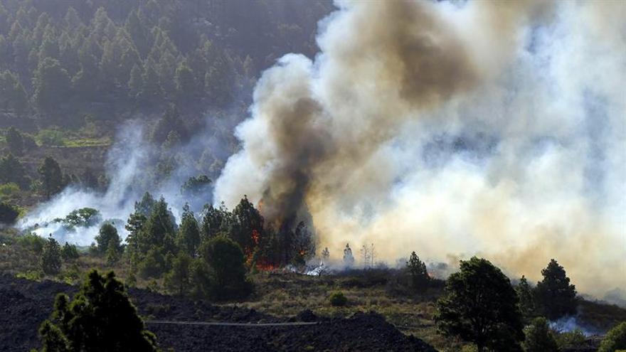 Las llamas del incendio forestal que desde el miércoles afecta a La Palma afectan a una zona de Tachando