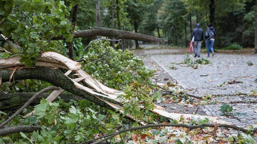 Cuatro muertos y caos ferroviario en el norte de Alemania por temporal