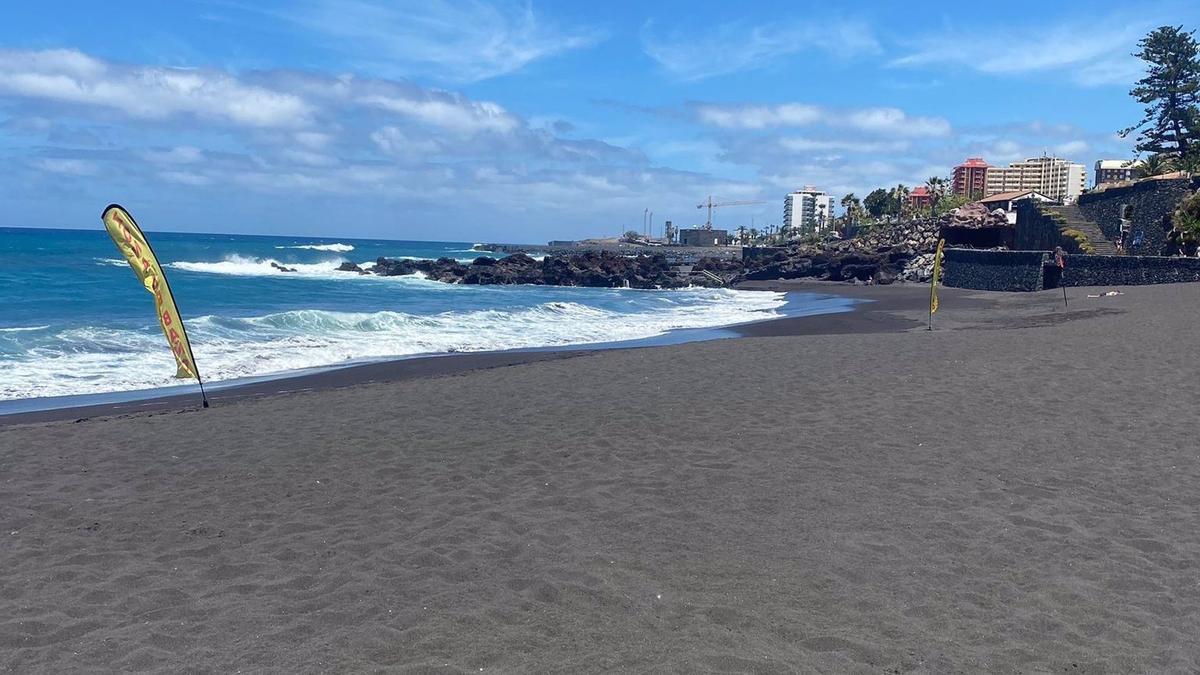 Playa de Punta Brava, Tenerife