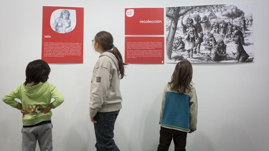 La exposición está en el Museo de Ciencias Naturales de la Universidad de Zaragoza