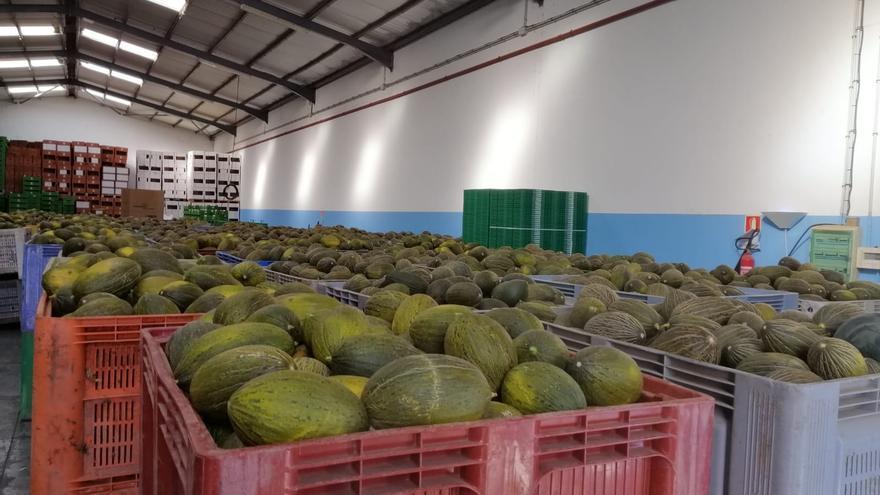 Excedente de melones.