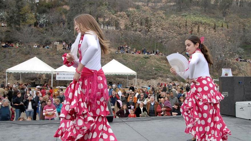 """La Escuela de Flamenco de Andalucía (EFA) ha desarrollado hoy un proyecto denominado """"Gran Festival Internacional de Flamenco Solidario"""" a beneficio de la Cruz Roja Española en la lucha contra el Covid-19 donde han participado 16 países."""