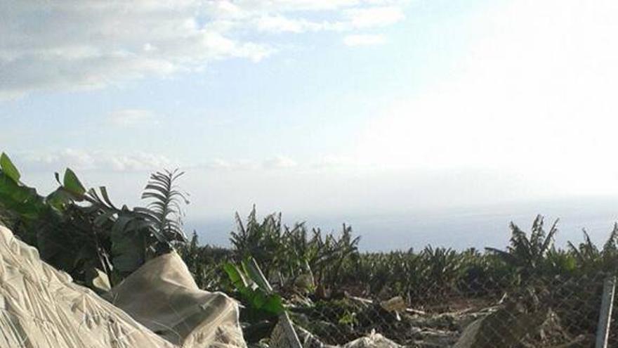 En la imagen, destrozos ocasionados por la rotura de la balsa. Foto: BOMBEROS LA PALMA
