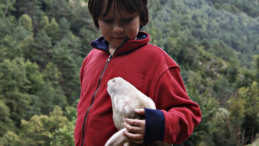 Los niños y las niñas tienen mucho que decir acerca del trato que damos a los demás animales. Foto: Paula Ramos