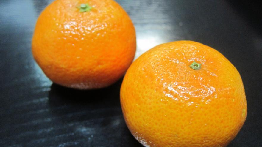 AZTI-Tecnalia y UPV desarrollan un nuevo proceso para obtener fibras dietéticas con subproductos cítricos