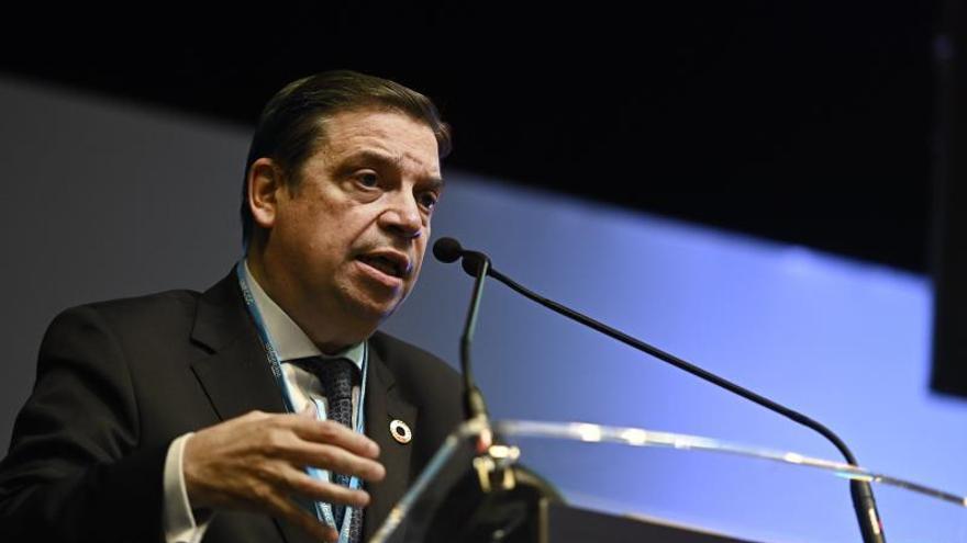 Luis Planas recalca la urgencia de frenar la degradación de los bosques