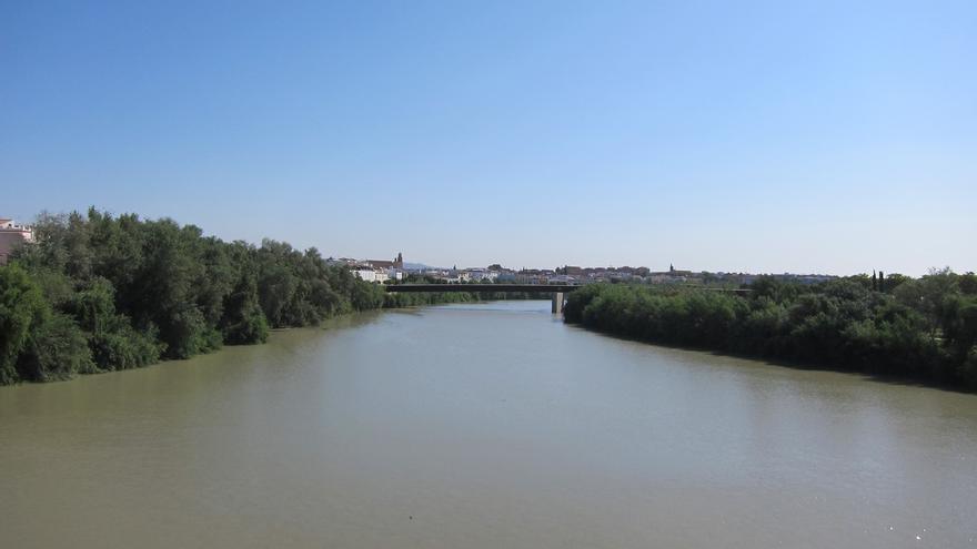 CajaSur y Universidad Loyola abordan este jueves la situación del regante ante el Plan Hidrológico Guadalquivir 2016