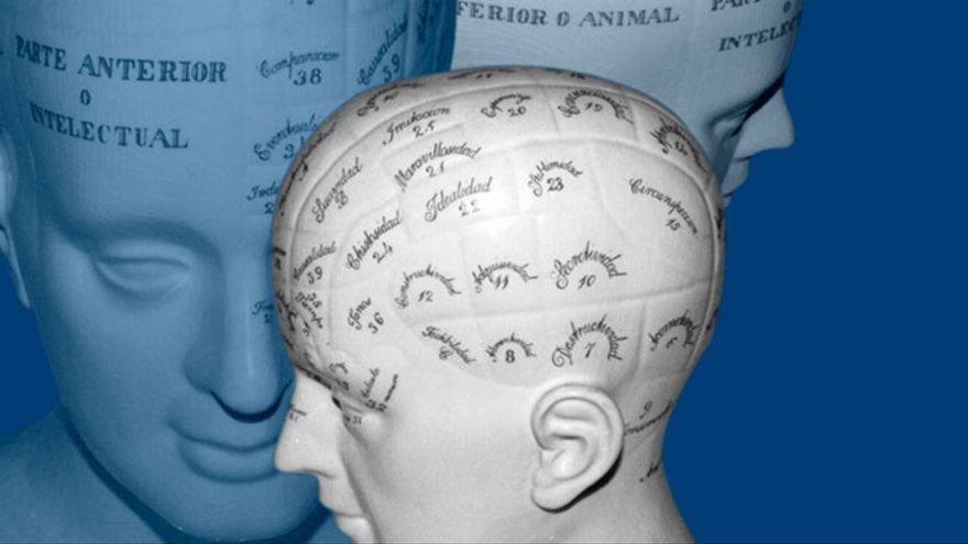 Imagen de una cabeza frenológica