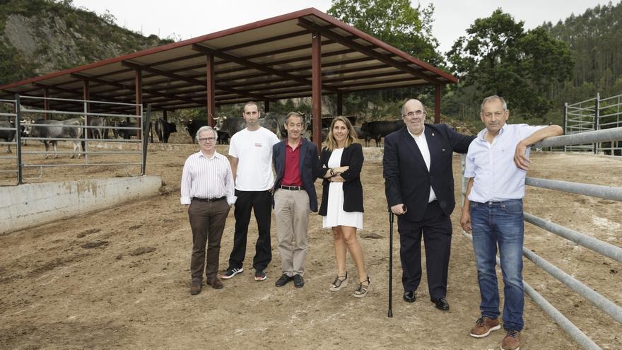 Ganadería trata de potenciar los cebaderos en Cantabria para impulsar la cría de ganado