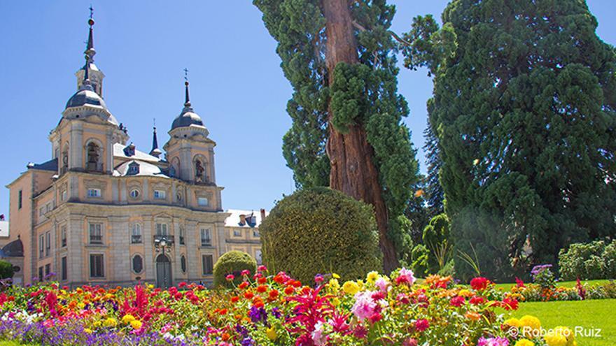 La Colegiata, las grandes  secuoyas y los colores de sus jardines son la cara exterior del Palacio.