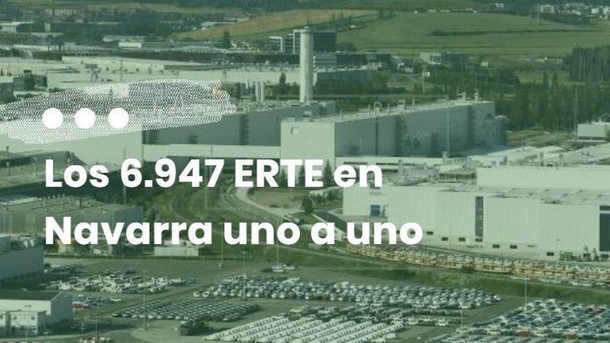 ERTE Navarra