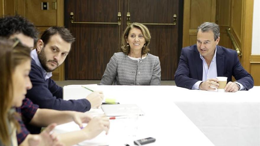 """Autoridades dicen que el satélite Paz es """"un hito"""" para la industria y las FFAA de España"""
