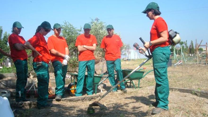 Una de las cooperativistas impartiendo un curso sobre maquinaria agrícola. / Germinando