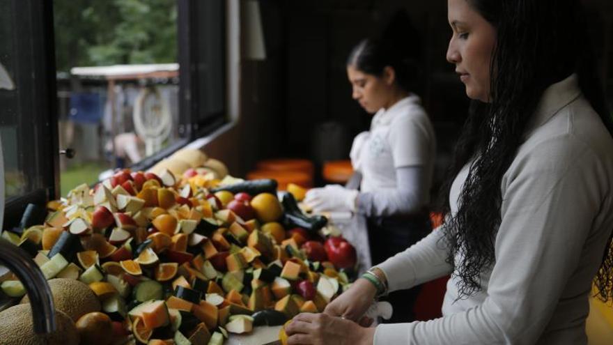 """Frutas selectas y suplementos: la dieta """"gourmet"""" en un zoológico de México"""