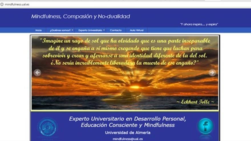 portadilla de la web del curso de experto de la UAL