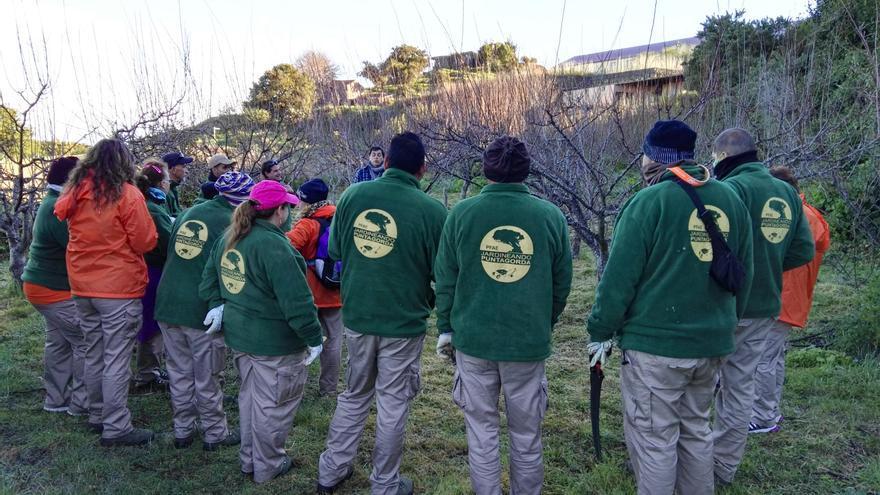 Participantes en el proyecto de Formación en Alternancia con el Empleo (PFAE)  'Jardineando Puntagorda'.