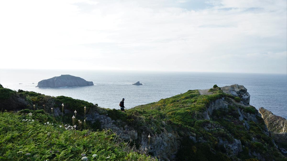 Acantilados del Cabo de Peñas, en Asturias