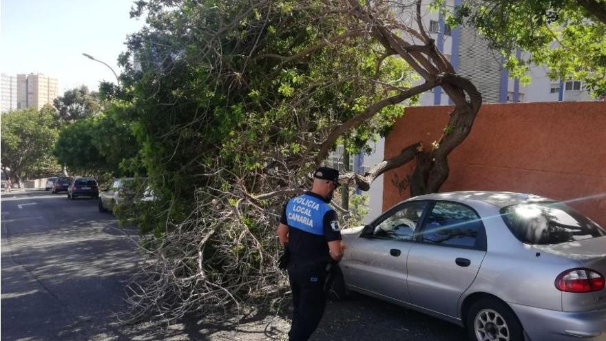 Primeras incidencias por el fuerte viento en las Islas