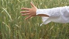¿Eres emprendedora en el sector agroalimentario y buscas reforzar tu liderazgo?
