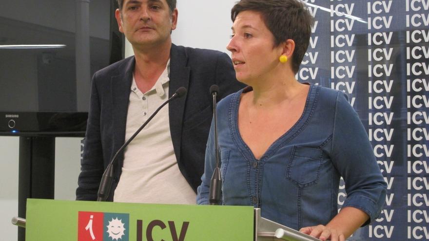 """ICV acusa al Gobierno de dar la espalda a la gente y rendirse a """"la troika"""" en los Presupuestos de 2013"""