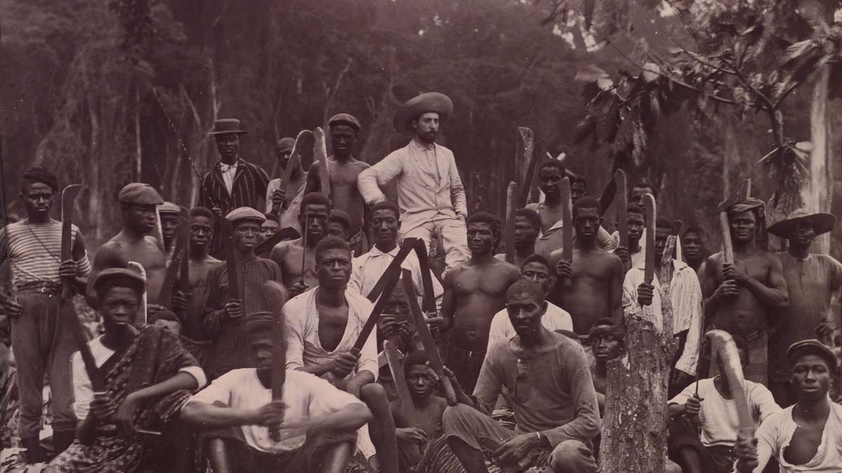 Preparación de una plantación de cacao de la empresa Rius y Torres, a principios del XX
