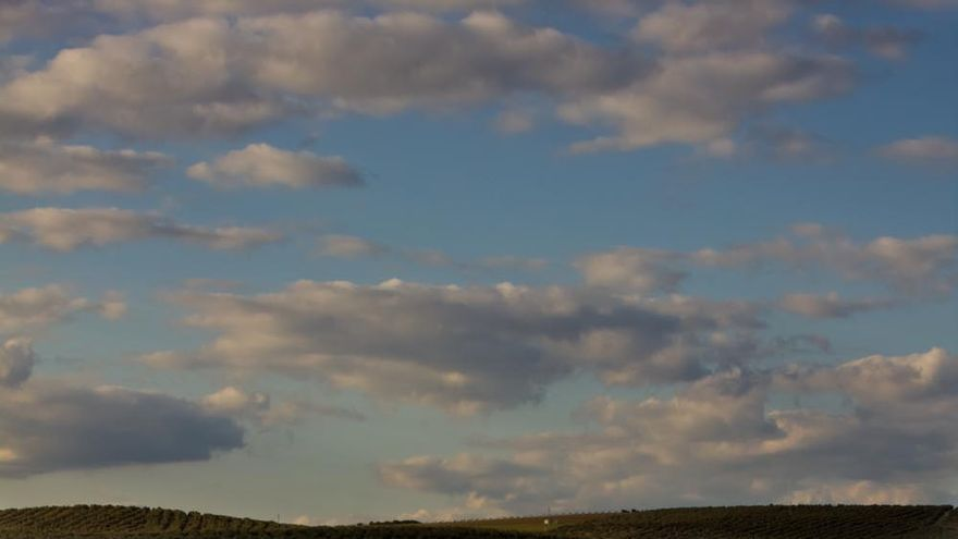 El mar de olivos; paisaje carácterístico de la provincia de Jaén. VIAJAR AHORA