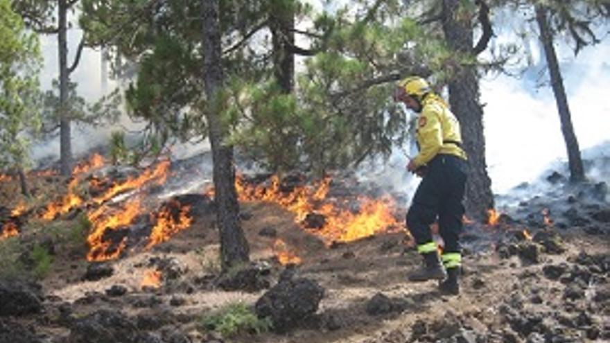 Foto de archivo del incendio forestal desatado en los montes de El Paso el pasado verano. (Foto: ÁNGEL PALOMARES)