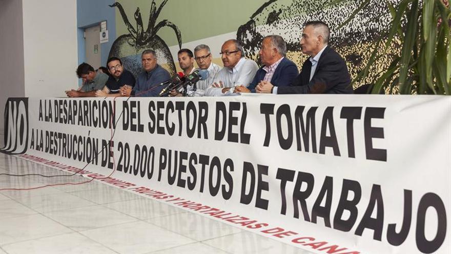 La Plataforma por la Defensa del Tomate, Frutas y Hortalizas de Canarias. EFE.