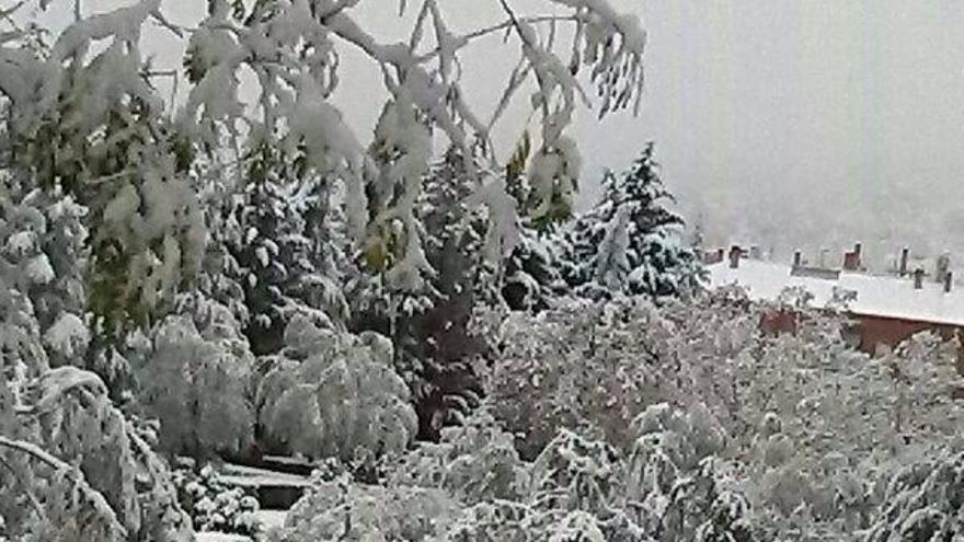El Parque de Cangallet, en Alcoy, nevado. Foto de Alberto Sandoval vía @agres7