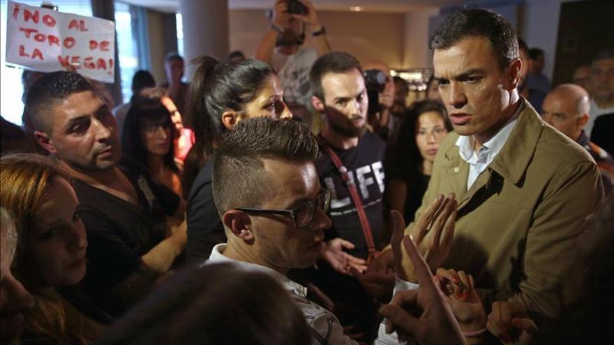 Sánchez se compromete ante activistas a prohibir el Toro de la Vega si gobierna