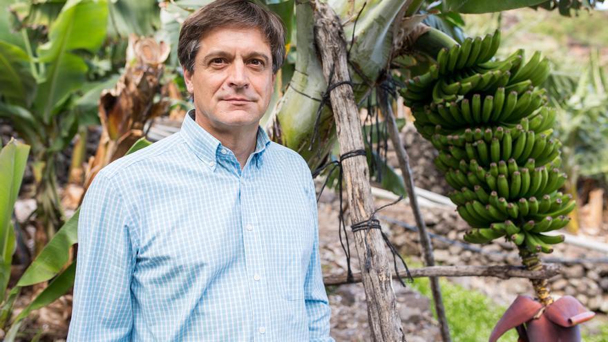 El sector platanero canario reconoce luces y sombras en el acuerdo del POSEI