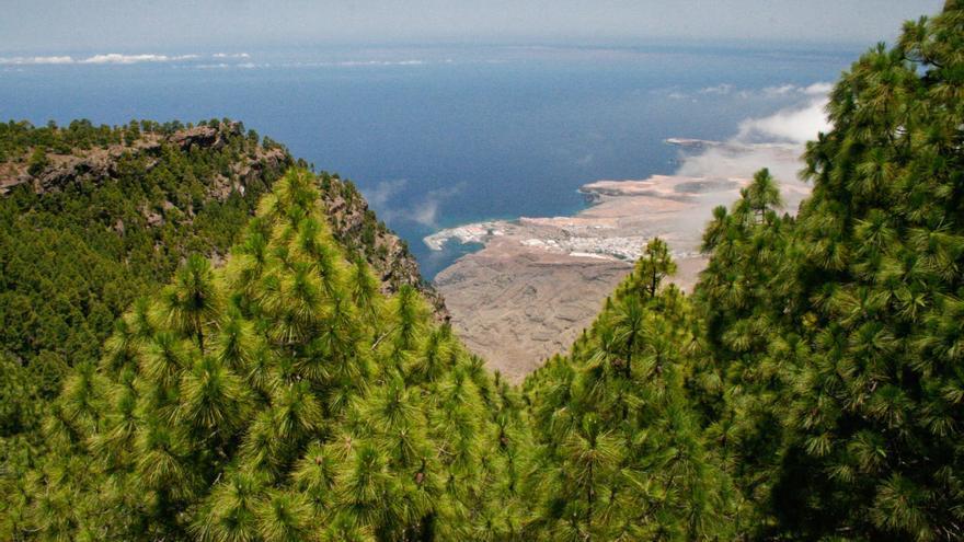 Vistas desde el Parque Natural de Tamadaba.