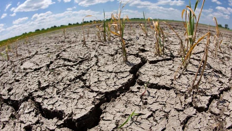 El Salvador registra 33 días de sequía y prevé que la situación continúe