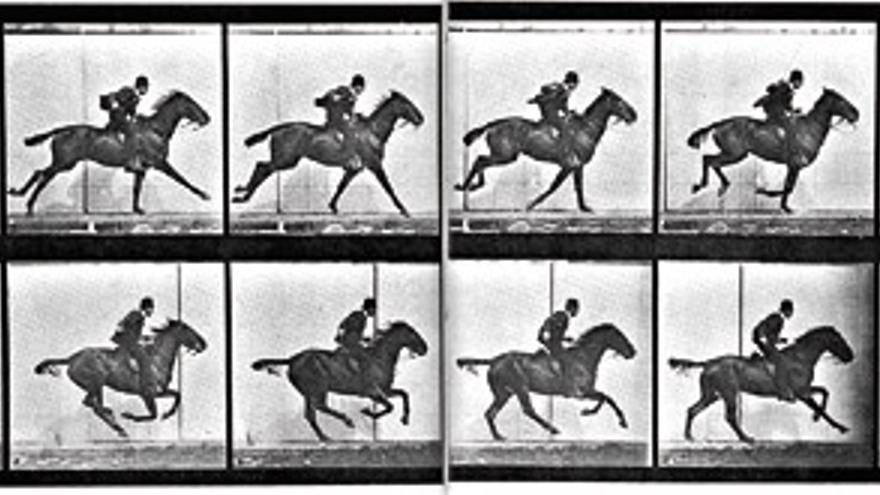'Le galop de Daisy', Eadweard Muybridge