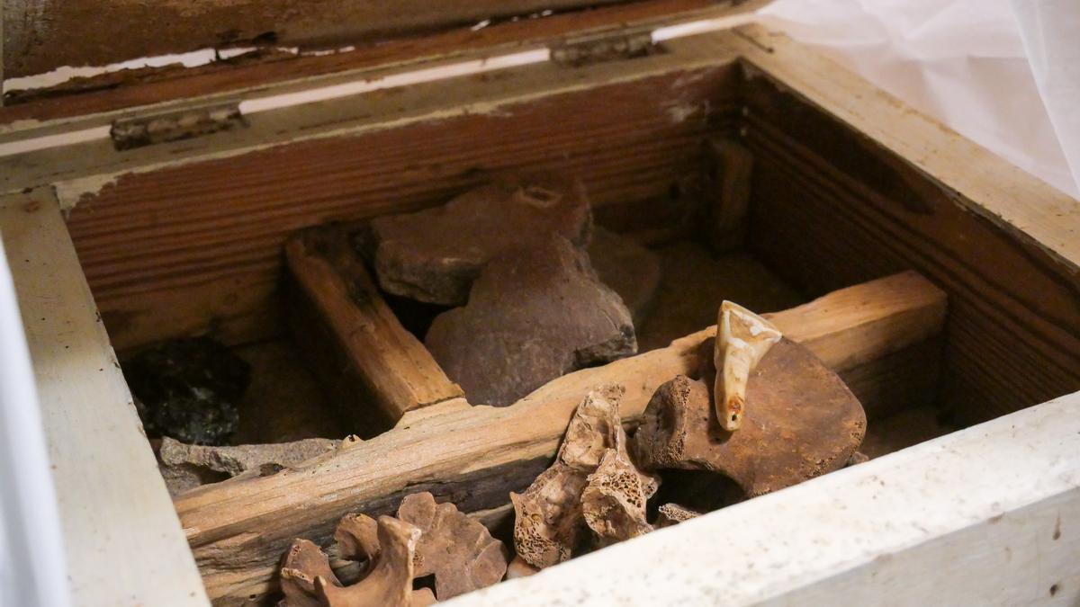 Contenido de una de las cajas encontradas en la basura